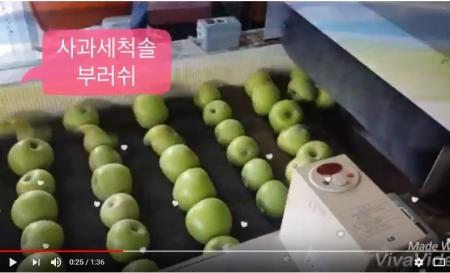 사과세척솔부러쉬 제작