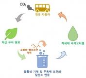 저급 유지를 바이오디젤로 전환하는 경제적인 촉매