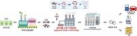 수소 생산 신기술의 기술‧경제적 타당성 제시