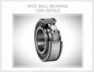 HEAVY DUTY PRECISION GROUND RADIAL BEARING