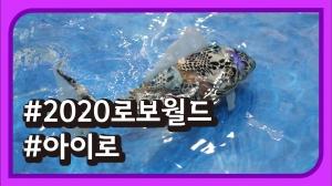 [2020 로보월드] 아이로(AIRO) 물고기 로봇