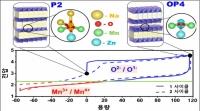 음이온도 화학반응하는 나트륨 이차전지 양극 개발